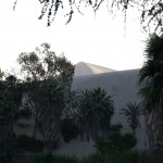 11-Huacachina-palmiers-dunes